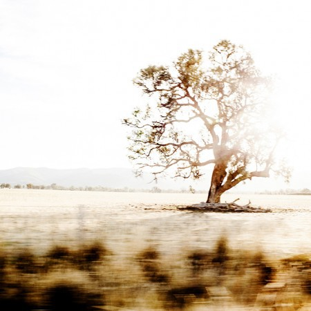 Limited Edition Photographic Print - Australian Road Trip