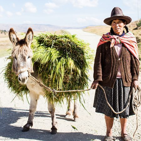 DONKEY & WOMAN PHOTOGRAPHIC PRINT